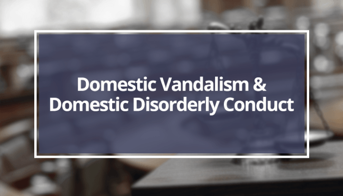 Domestic-Vandalism-&-Domestic-Disorderly-Conduct